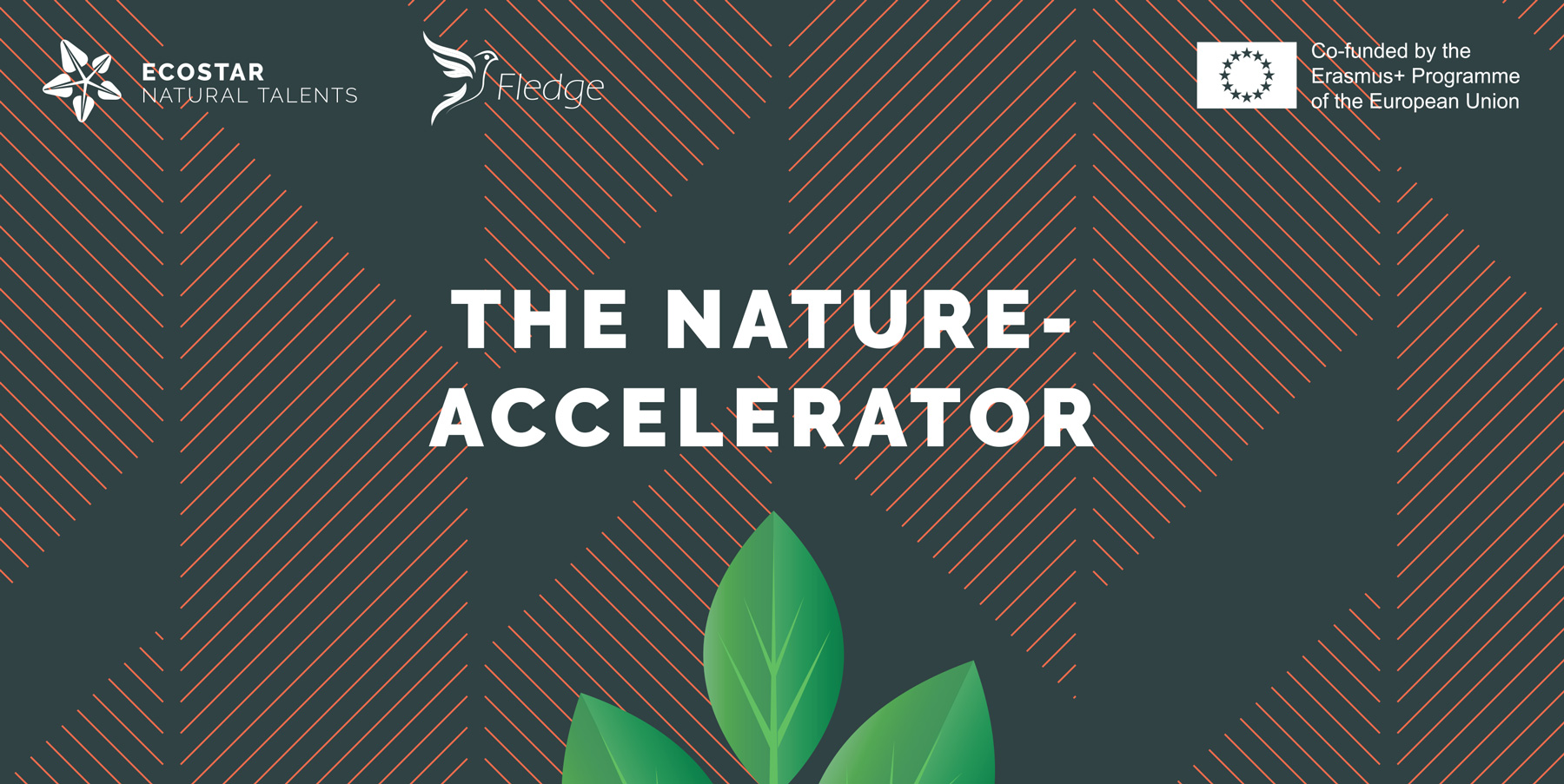 The Nature-Accelerator developed by ECOSTAR