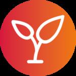 icone-capital